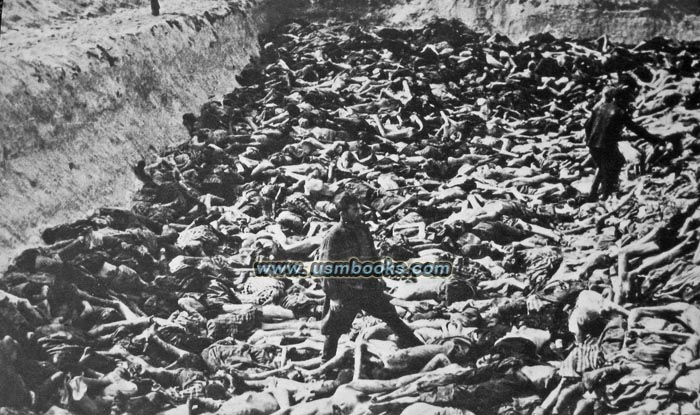 an analysis of the life conditions in the nazi concentration camps concentration camps in vienna the auschwitz concentration camp complex was the largest of its kind established by the nazi regime it included three main camps, all of which deployed incarcerated prisoners at forced labor.